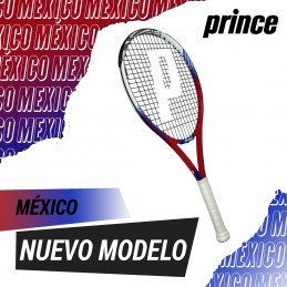 Prince México 110 - Frontenis