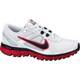 Nike Dual Fusion ST 407853-101